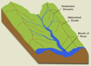 Diagram of a Watershed